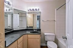 the-hamilton-austin-tx-2br-2ba-1002sf-master-bath